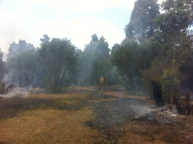 Mopping up after Glover Road Fire