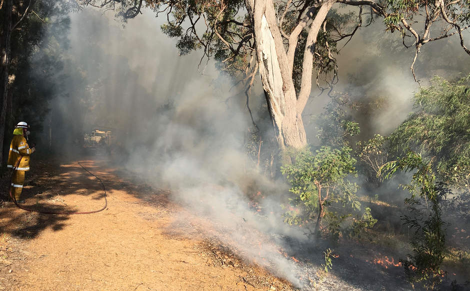 Monitoring the Firebreak-Blue Orchid Court